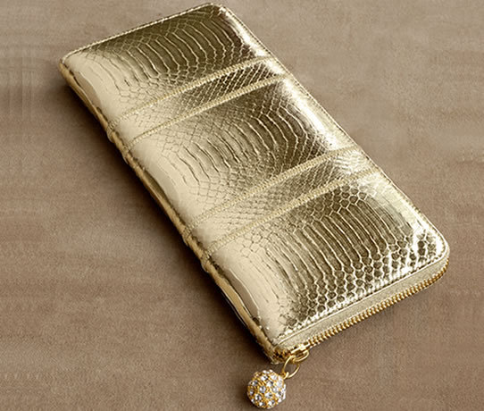 Kotur Kellett Zipper Clutch in metallic gold