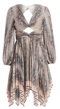 Zimmermann Corsage Python Print Pleated Dress
