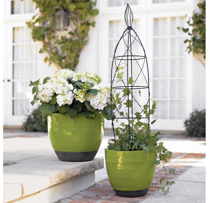 Curved Pots