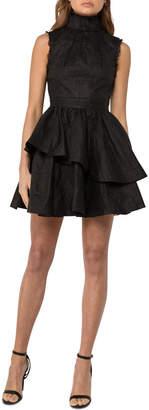 Asilio Organdy Pleated Dress