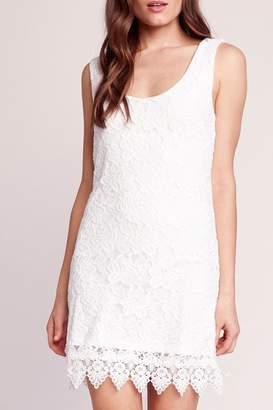 BB Dakota Lace Body-Con Dress