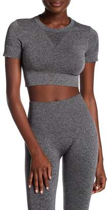 Ivy Park Seamless Crop Shirt $35 thestylecure.com