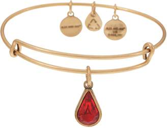 Alex and Ani Goldtone Crystal Charm Bangle