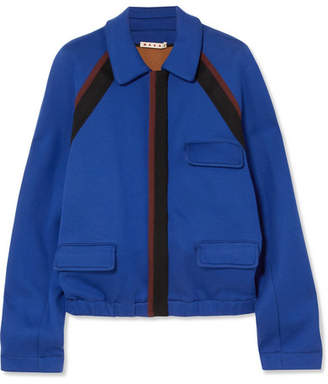 Marni Striped Cotton-blend Jersey Jacket - Royal blue