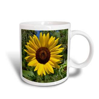 3dRose Summer Sunflower Flower Photography Macro, Ceramic Mug, 15-ounce