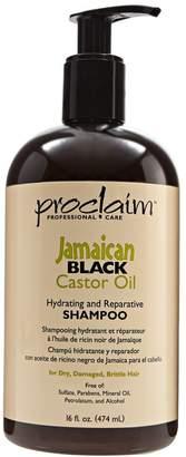 Proclaim Jamaican Black Castor Oil Shampoo