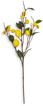 Sur La Table Lemon Branch