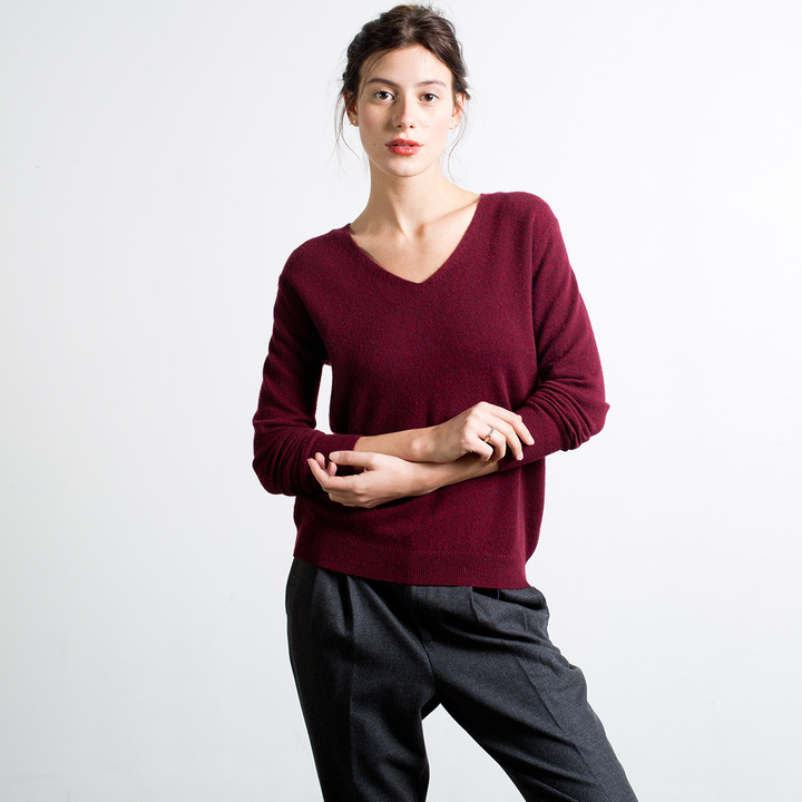 Everlane The Slouchy Cashmere V-Neck