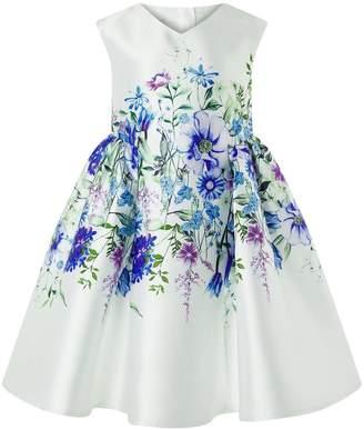 Monsoon Eden Print Dress