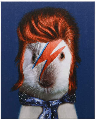 "Glam Rock Empire Art Direct Pets Rock 'Glam Rock' Graphic Art on Wrapped Canvas Wall Art - 20"" x 16"""
