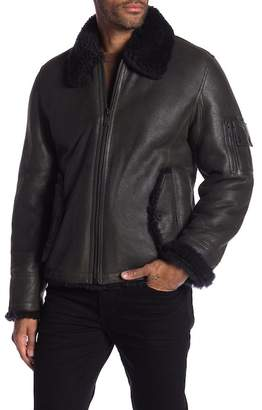 Daniel Won Genuine Dyed Lamb Shearling Trim & Lined Lamb Leather Zip Front Bomber Jacket