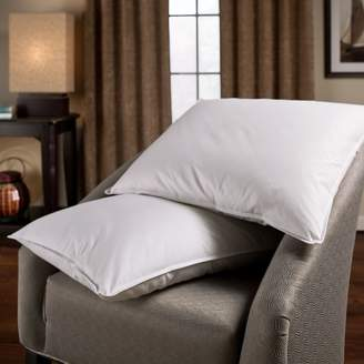 +Hotel by K-bros&Co Downlite Feather & Down Blend Hotel Pillow