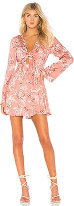 Somedays Lovin Wild World Mini Dress