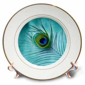 3dRose Peacock Feather on Turquoise Background - Porcelain Plate, 8-inch