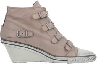 Ash High-tops & sneakers - Item 44954689AU