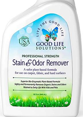 Stain Remover and Odor Eliminator - The Best Professional Strength Toddler