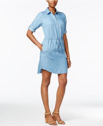 Lee Platinum Denim Shirtdress $62 thestylecure.com