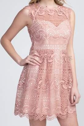 Apricot Lane Lace Overlay Dress