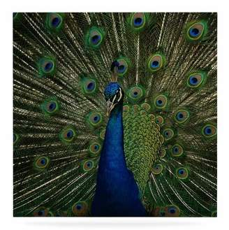 East Urban Home 'Proud Peacock' Photographic Print on Metal