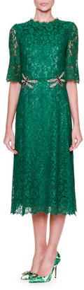 Dolce & Gabbana Dragonfly-Embellished Lace Midi Dress, Light Musk Green $4,295 thestylecure.com