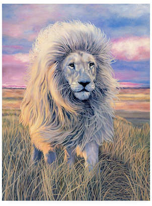 "Jan Henderso Timbavati Messenger Canvas Art - 36.5"" x 48"""