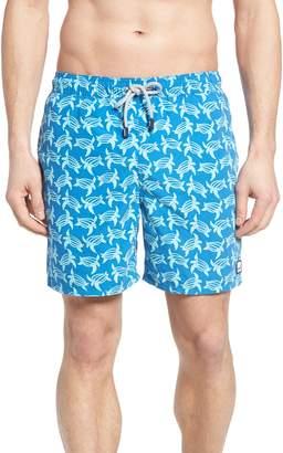 Trunks Tom & Teddy Turtle Print Swim