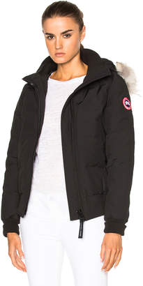 ... Canada Goose Savonna Bomber With Coyote Fur