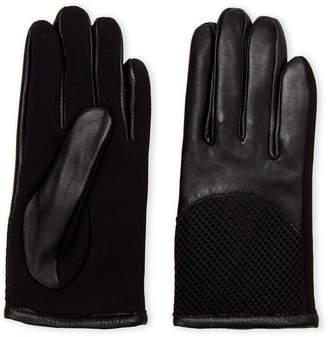 Tahari Black Driving Mesh Gloves