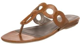 Moda Spana Women's Jolly Thong Sandal