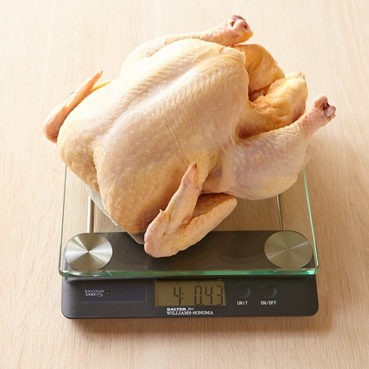 Williams-Sonoma Touchless Tare High-Capacity Glass Scale