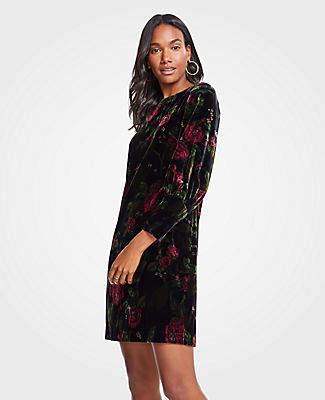 b7d882722998 Ann Taylor Petite Cuffed Floral Velvet Shift Dress