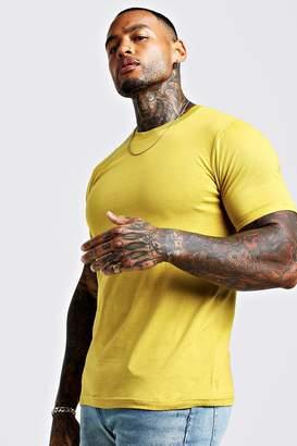boohoo Basic Roll Sleeve T-shirt