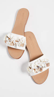 Mystique Seashell Slides
