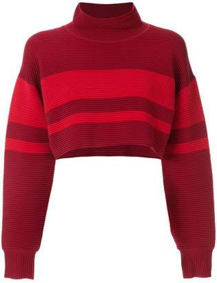 Nagnata retro cropped turtleneck jumper