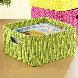 World Market Macaw Green Madison Storage Basket