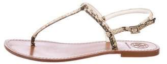 Tory Burch Embossed Thong Sandals