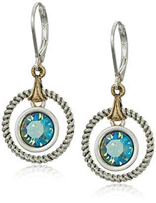 Swarovski Napier Women's Erenite Drop Earrings