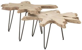 One Kings Lane Asst. of 2 Drift Nesting Tables - Gray