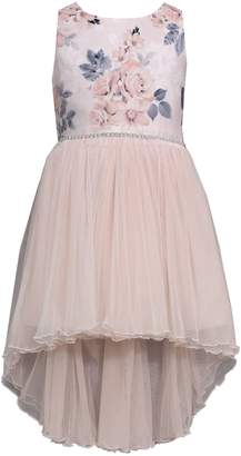 Iris & Ivy Little Girl's Floral Bow Back Party Dress