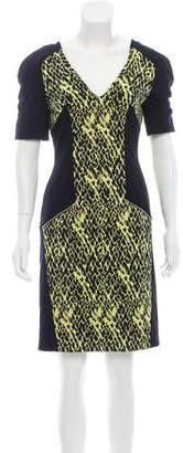 Matthew Williamson V-Neck Printed Dress