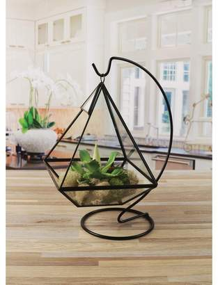 Glass Terrarium Shopstyle
