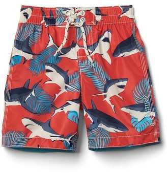 Tropical sharks swim trunks $24.95 thestylecure.com
