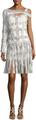 Herve Leger Asymmetric Fringe Dress