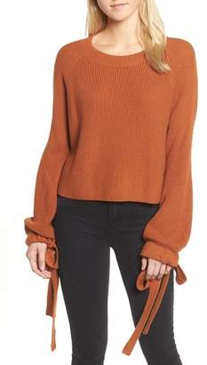 Trouve Tie Sleeve Crop Sweater