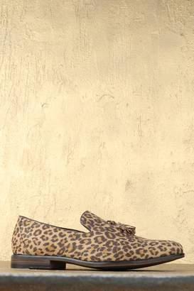 boohoo Faux Suede Leopard Tassel Loafer