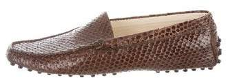 Tod's Snakeskin Driving Loafers