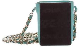 Chanel Ponyhair Crossbody Bag