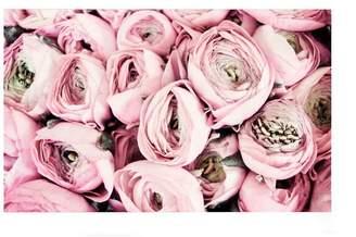 Pottery Barn Flower Kisses Paper Print by Lupen Grainne