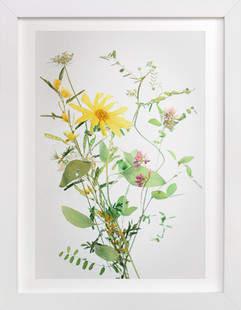 A Bunch of Wild Flowers Art Print
