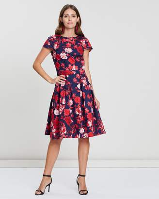 Dorothy Perkins Cotton Poplin Fit-And-Flare Dress
